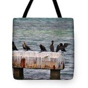 Cormorants Key West Tote Bag