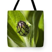 Cornflower Bud Tote Bag