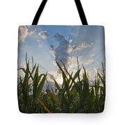 Cornlight Tote Bag