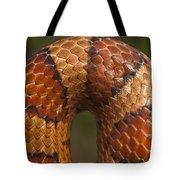 Cornsnake Elaphe Guttata Scale Pattern Tote Bag