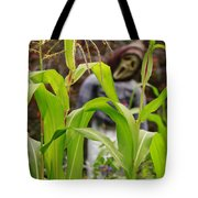 Cornstalks Tote Bag