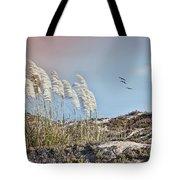 Coronado Island Pampas Grass Tote Bag