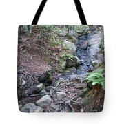 Corte Madera Creek On Mt Tamalpais Tote Bag