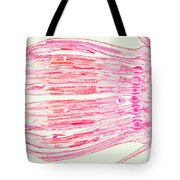 Cosmos Flower Lm Tote Bag