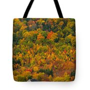 Cottage In Front Of Autumn Colours Tote Bag
