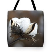 Cotton - Southern Gold Tote Bag