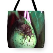 Cotton Boll Weevil Tote Bag