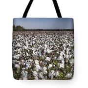 Cotton In Limestone County Tote Bag