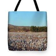 Cotton Landscape Protected 02 Tote Bag