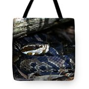 Cotton Mouth Hiding In Gum Swamp Tote Bag