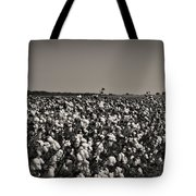 Cotton The Heart Of Dixie Tote Bag