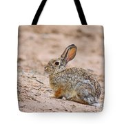 Cottontail Bunny Tote Bag