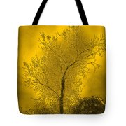 Cottonwood Tree April 2012 In Gold Tote Bag