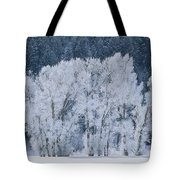 Cottonwood Trees With Frost Tote Bag