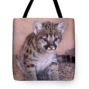 Cougar Kitten Tote Bag