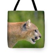 Cougar Profile Tote Bag