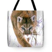 Cougar Stalks Through Snow Tote Bag
