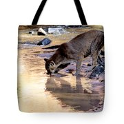 Cougar Stops For A Drink Tote Bag