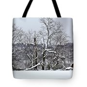 Country Christmas 5 Tote Bag
