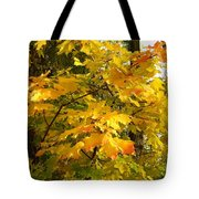 Country Color 10 Tote Bag