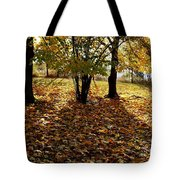 Country Color 11 Tote Bag