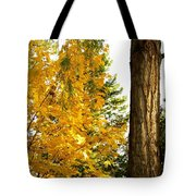 Country Color 19 Tote Bag