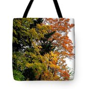 Country Color 2 Tote Bag