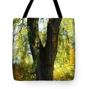 Country Color 20 Tote Bag