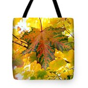 Country Color 21 Tote Bag