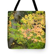 Country Color 23 Tote Bag