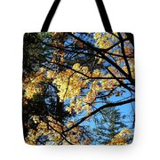 Country Color 25 Tote Bag