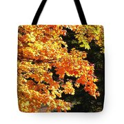 Country Color 26 Tote Bag