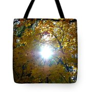 Country Color 3 Tote Bag