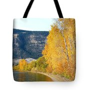 Country Color 6 Tote Bag