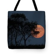 Country Moon  Tote Bag