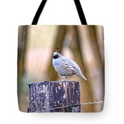 Country Quail Tote Bag
