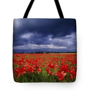 County Kildare, Ireland Poppy Field Tote Bag