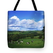 County Tipperary, Ireland, Dairy Cattle Tote Bag