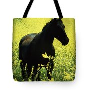 County Tipperary, Ireland Horse In A Tote Bag
