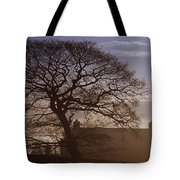 County Tyrone, Ireland Winter Morning Tote Bag