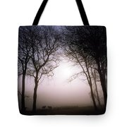 County Wicklow, Ireland Tote Bag
