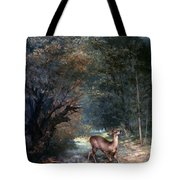 Courbet: Hunted Deer, 1866 Tote Bag