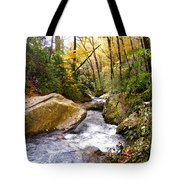Courthouse River In The Fall 2 Tote Bag