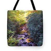 Courthouse River In The Fall 3 Tote Bag