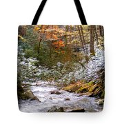 Courthouse River In The Fall Tote Bag