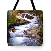 Courthouse River In The Fall Filtered Tote Bag