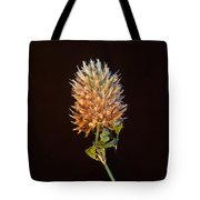 Cover Aglow 1 Tote Bag