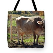 Cow Shadows Tote Bag