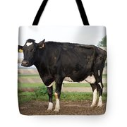 Cow With Johnes Disease Tote Bag