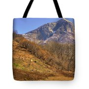 Cowhouse And Snow-capped Mountain Tote Bag